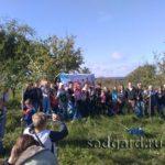 посадка саженцев яблони у Белого Колодца, Зарайск