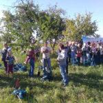 саженцы плодовых деревьев, посадка у Белого Колодца, Зарайск