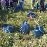 саженцы черешни, алычи и яблони посадка у Белого Колодца, Зарайск